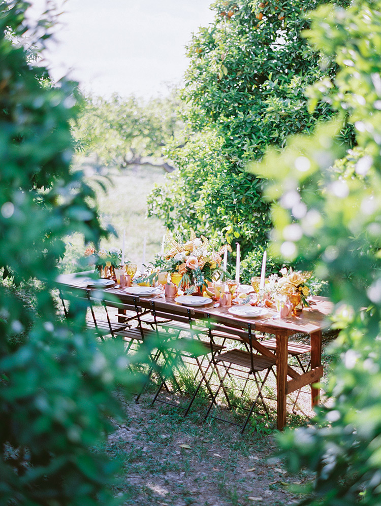 wedding reception in an orchard