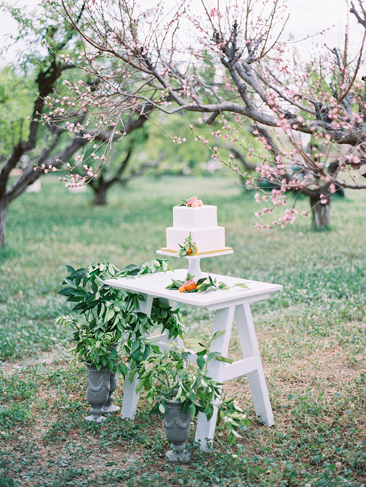 White wedding cake accented with citrus by Sift Bakehouse