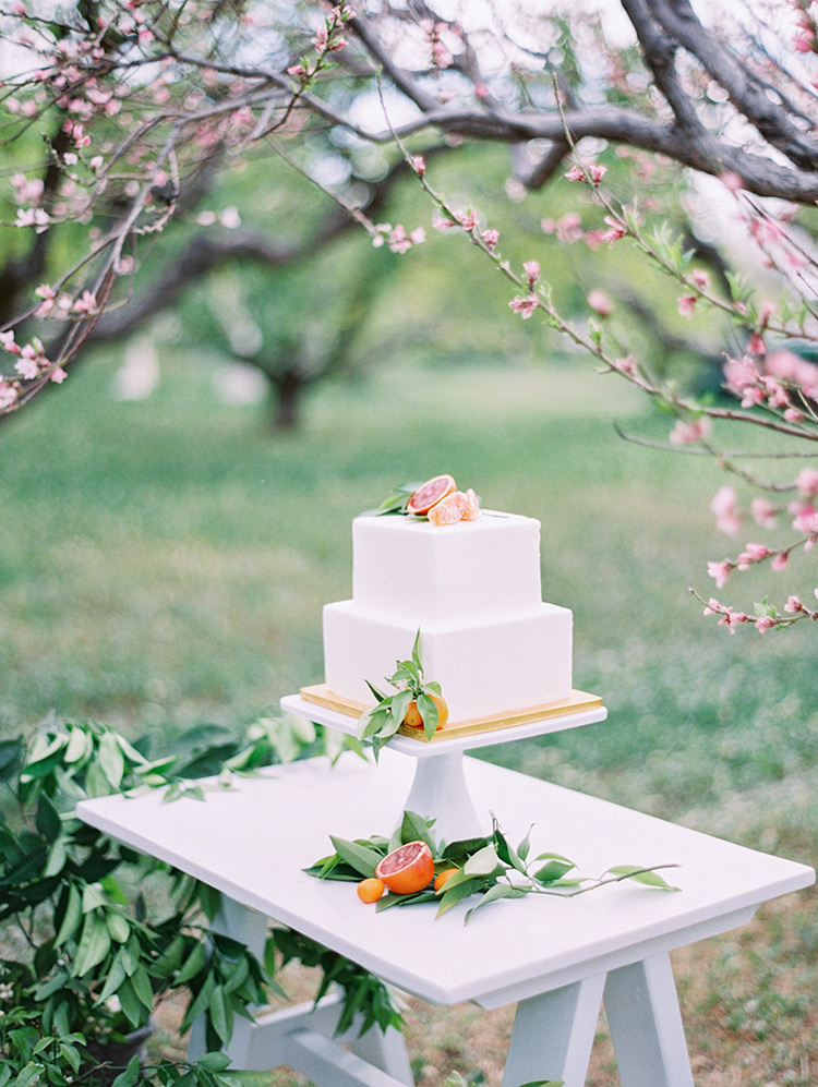 citrus themed wedding cake by Sift Bakehouse
