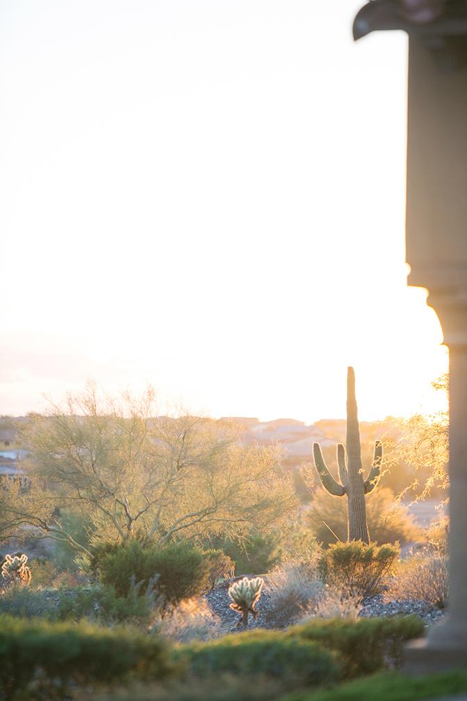 Arizona desert at the Blackstone Country Club