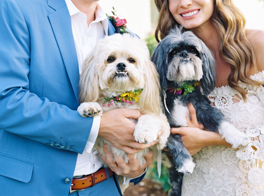 including pets in the wedding!