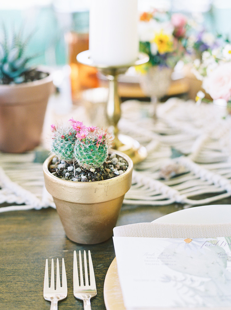 cactus as wedding favors