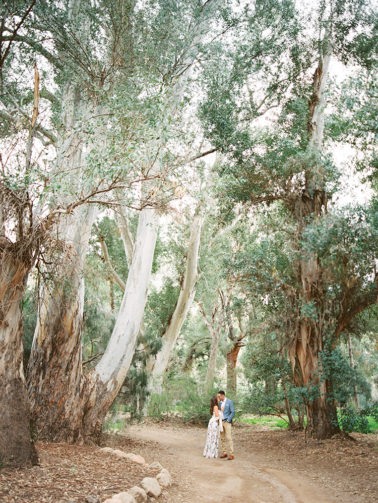 romance under the eucalyptus trees, Boyce Thompson Arboretum