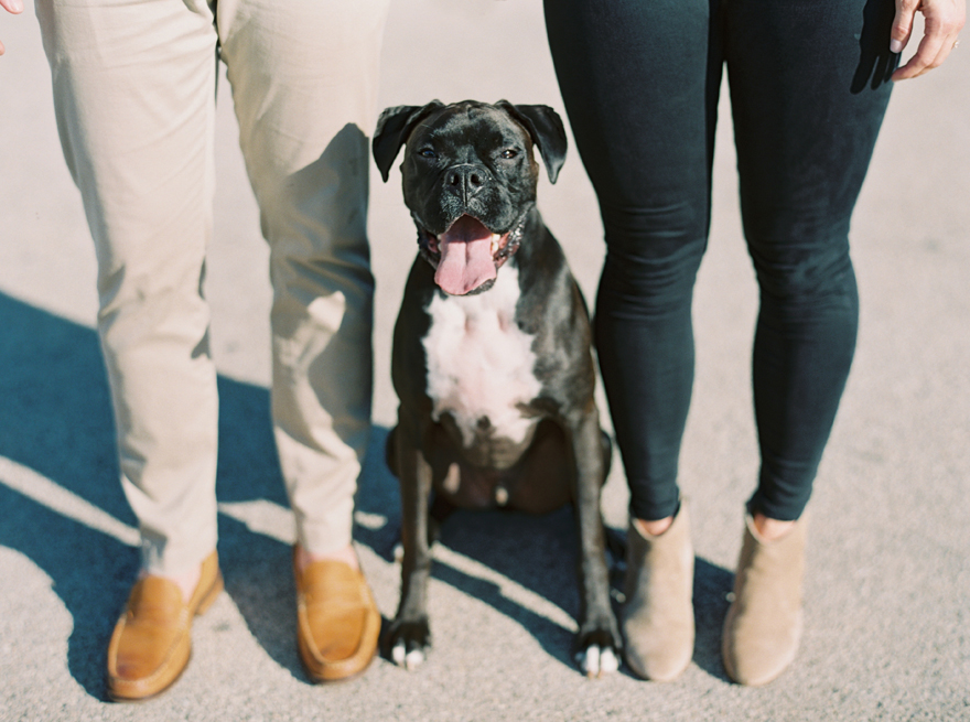 Engagement shoot with the couple's dog