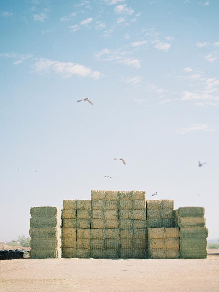 large stacks of hay