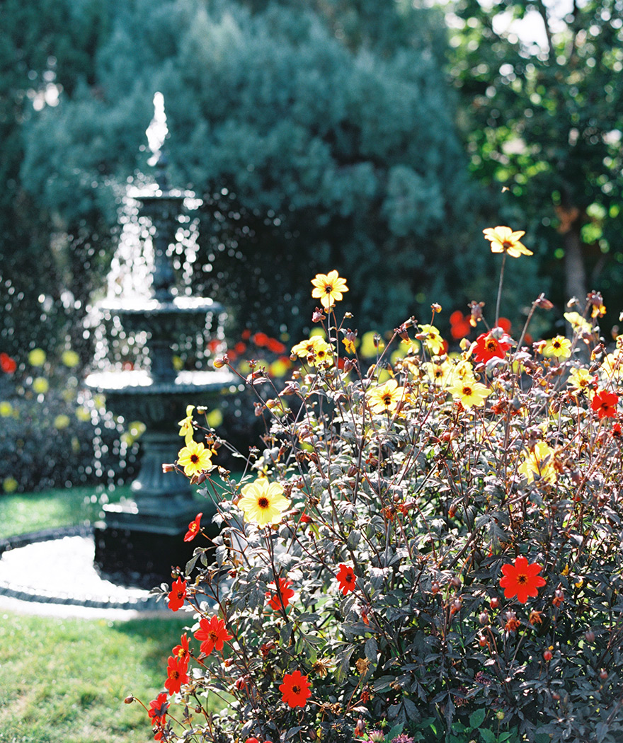 Beautiful vintage water fountain in courtyard with vibrant red and yellow flowers.