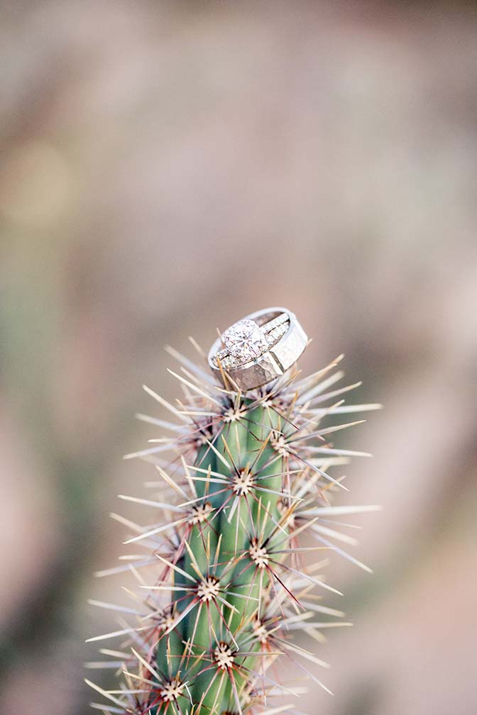 dazzling wedding rings on a cactus