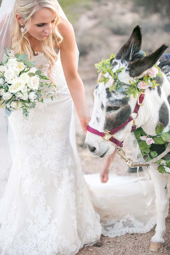 bride with the beer burro