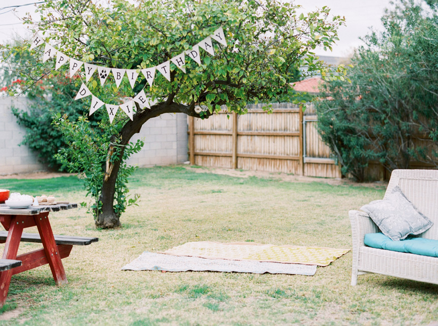 backyard dog birthday party
