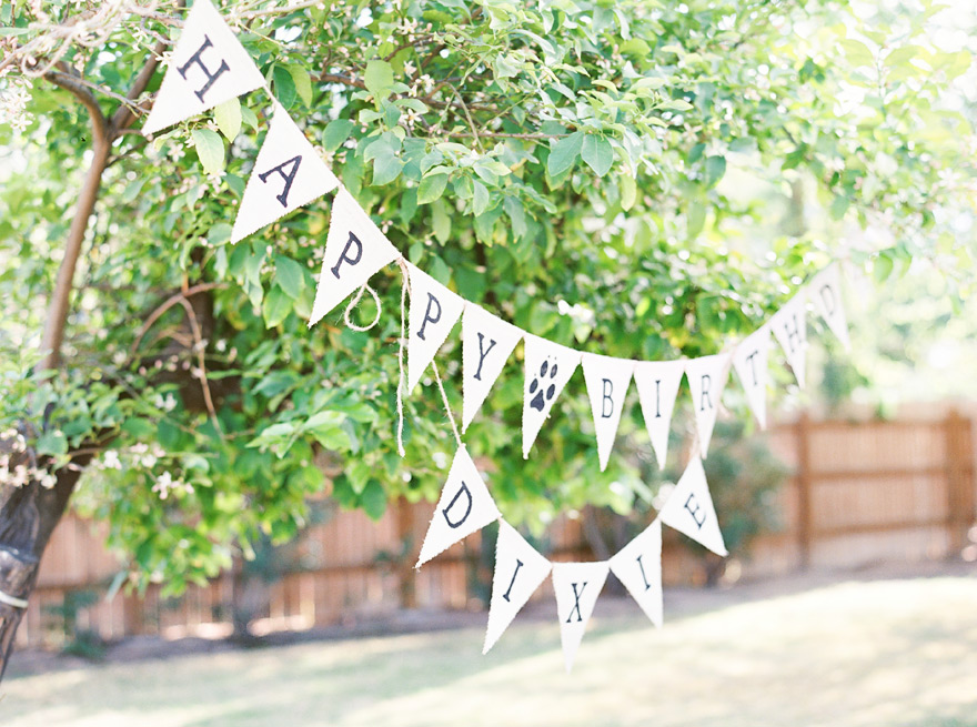 Tribal shaped birthday streamers.