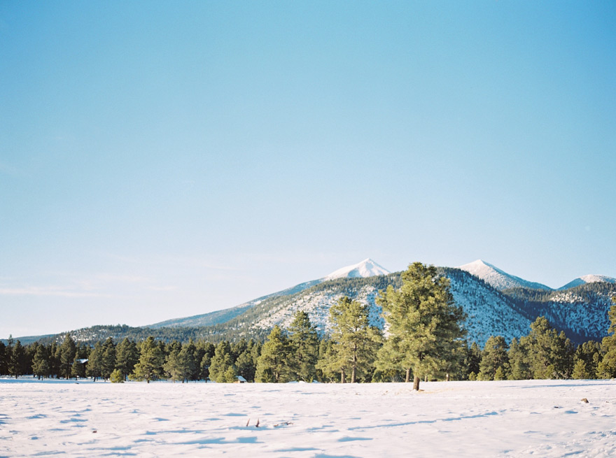 snowy landscape in Flagstaff, Arizona