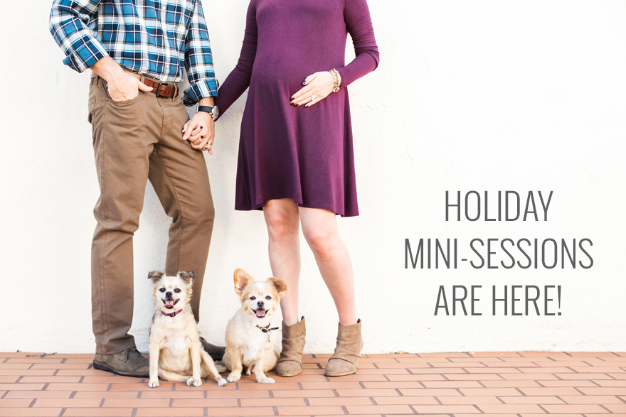 Holiday Mini-sessions are here!