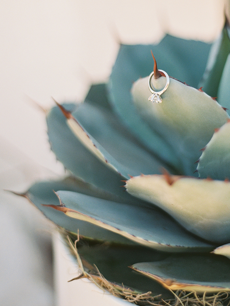 engagement ring on a large succulent