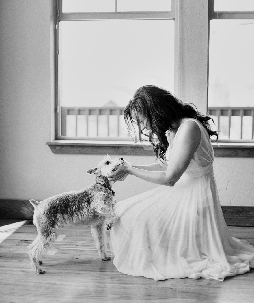 bride's miniature schnauzer approves her dress