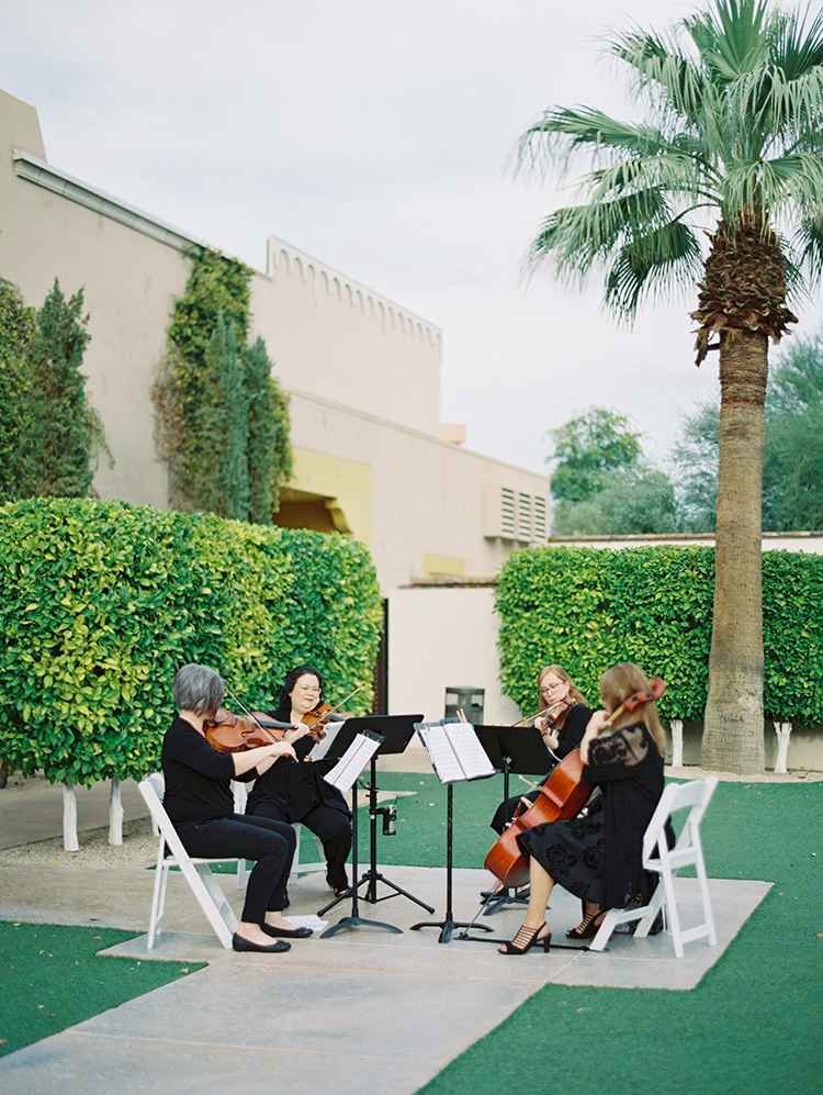 string quartet at an outdoor wedding