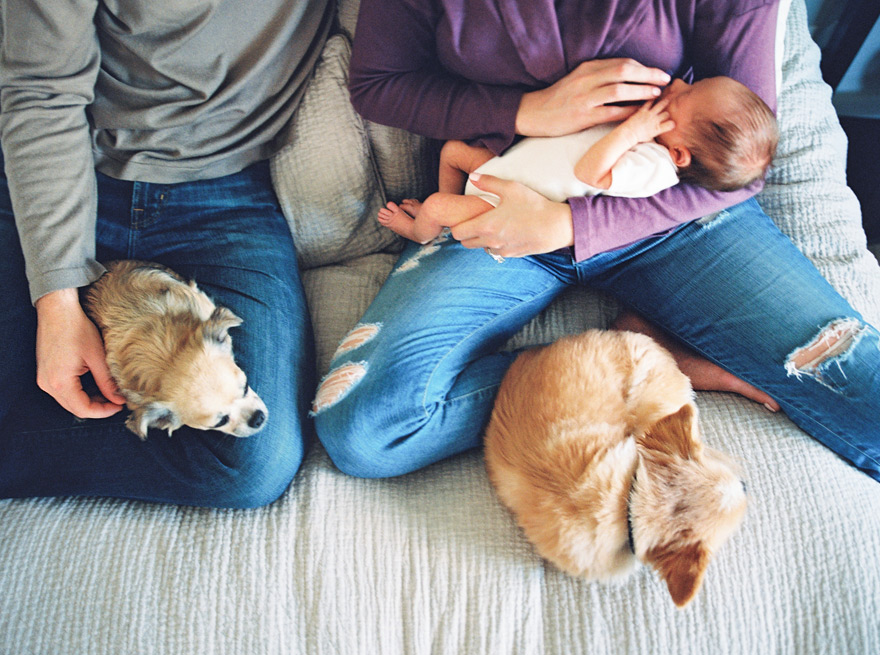Family and dogs relaxing on bed with peaceful newborn.