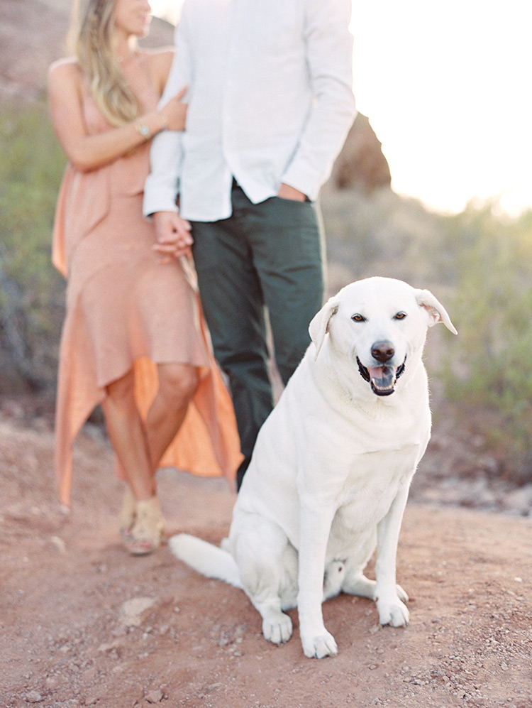 Papago Park engagement portraits