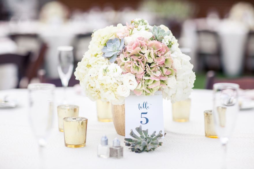 Outdoor wedding reception table with hydrangeas and succulents. Wedding flowers.