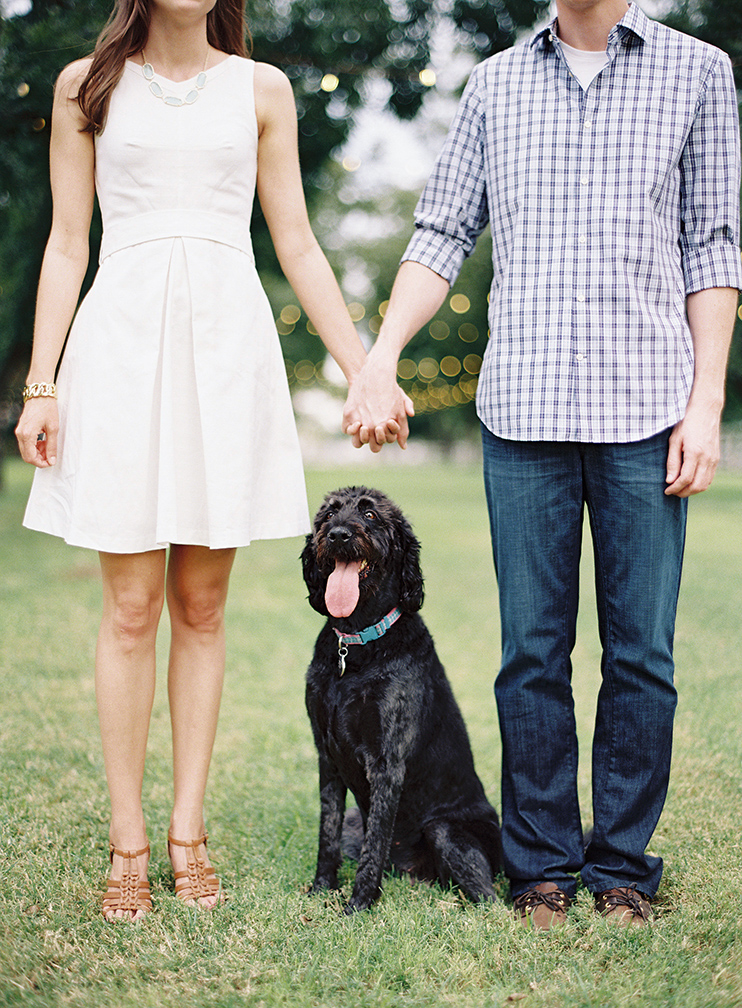 Adorable dog in an outdoor engagement shoot