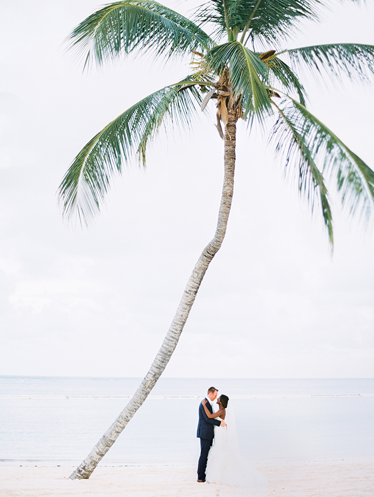 love this wedding portrait under a lone palm tree!