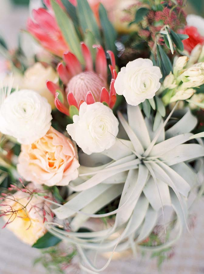 xerographica air plants & protea combine with soft florals to make a statement