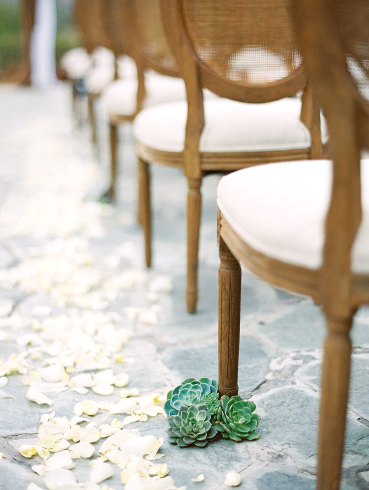 succulents adorn an outdoor wedding ceremony