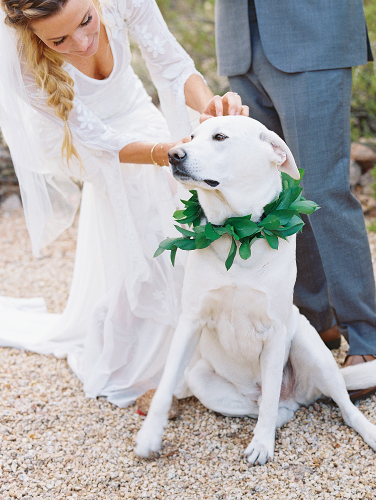 boho bride & groom with their dog