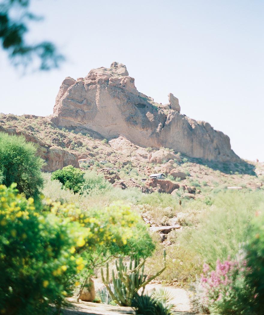 Phoenix, AZ desert