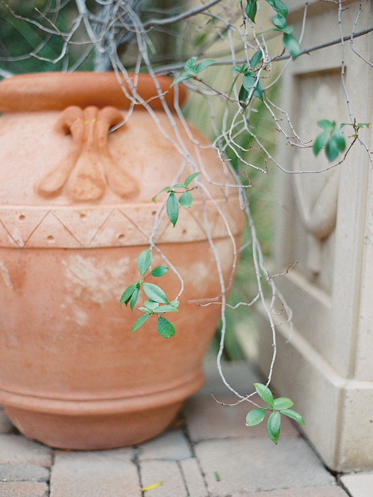 terra cotta pot, outdoor decor