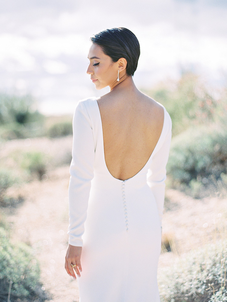 Backless wedding dress with long sleeves from Pronovias Barcelona