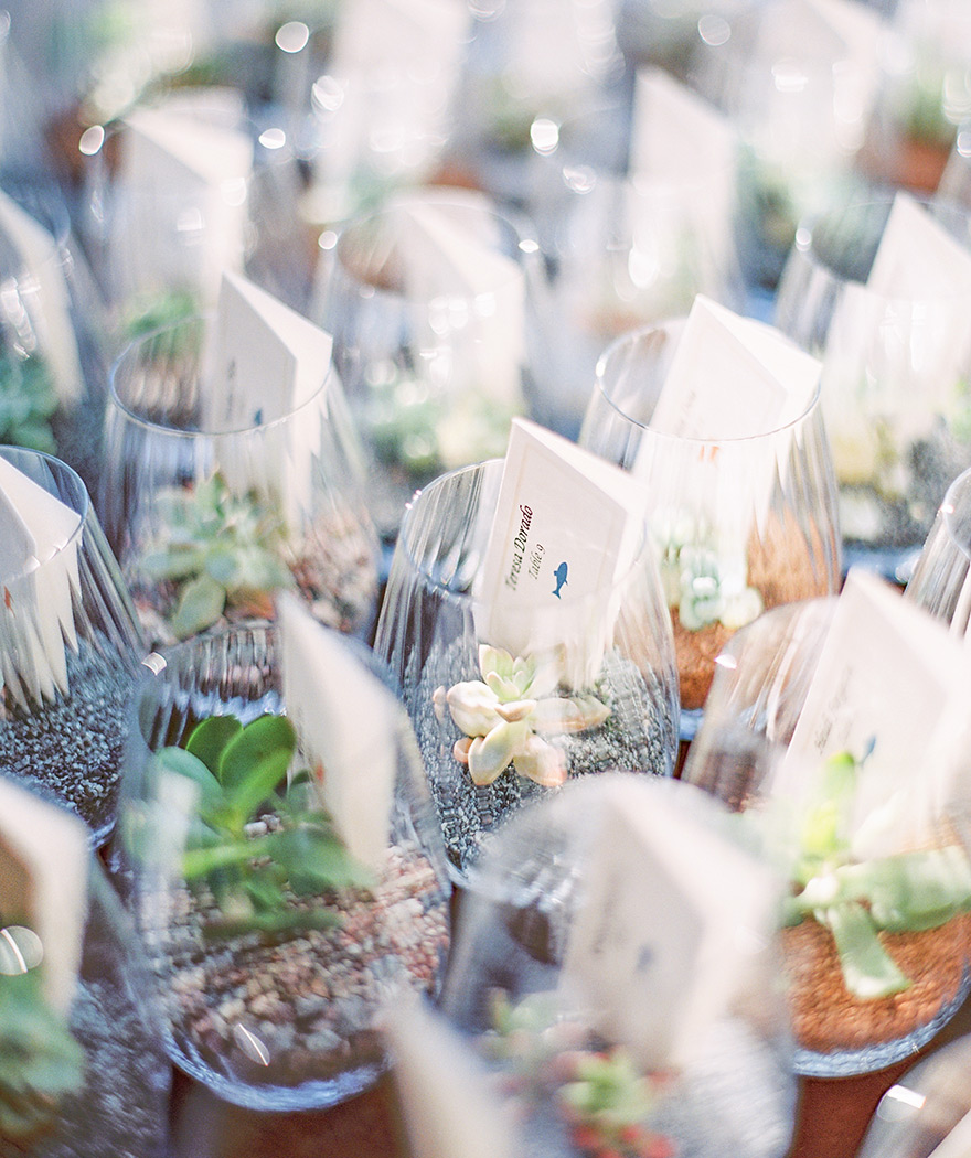 tiny succulents in glasses hold escort cards for the wedding reception