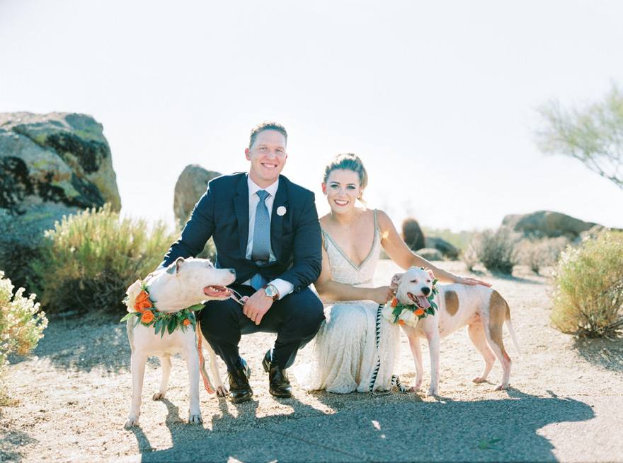 bride & groom with their beloved dogs