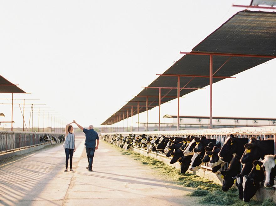 diary farm engagement shoot