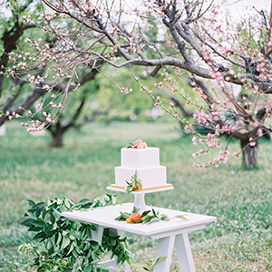 Citrus Wedding Inspiration Featured on Ruffled