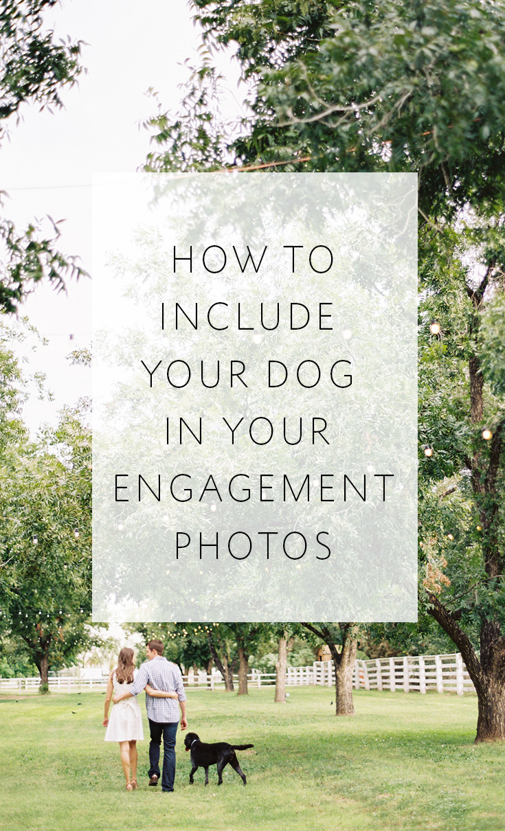 5 tips for including your dog in your engagement photos, plus adorable inspiration!